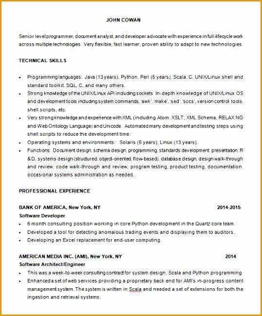Free Senior Programmer Resume Template Download