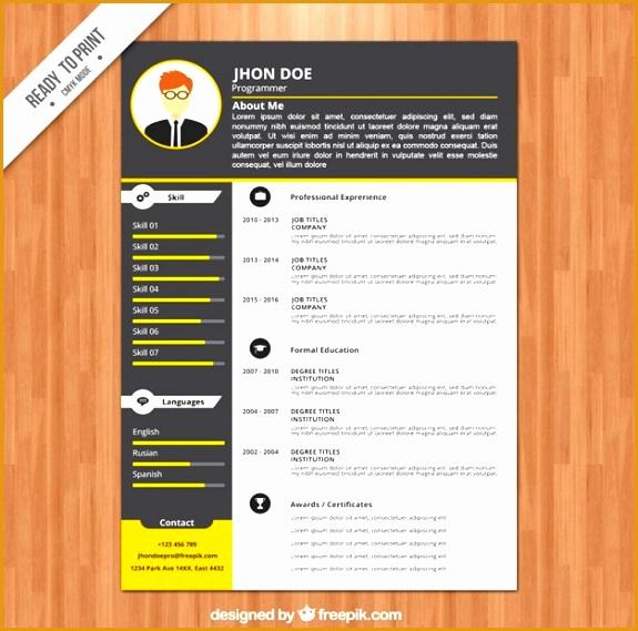 programmer resume template 23