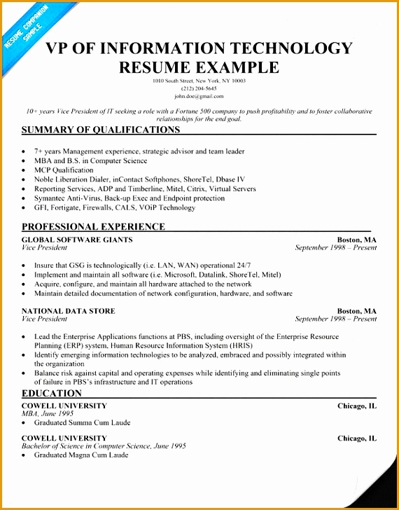 health information technology Information Technology Director Resume728570