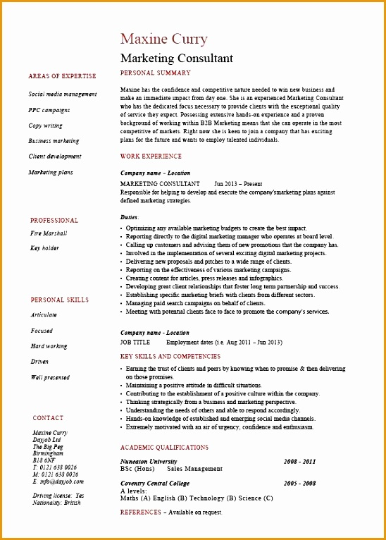 pic marketing consultant resume 01