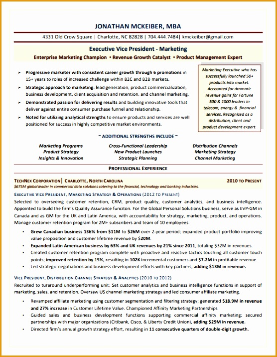 EVP Marketing Executive Resume Sample716556