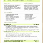 5 Professional Job Resume Template