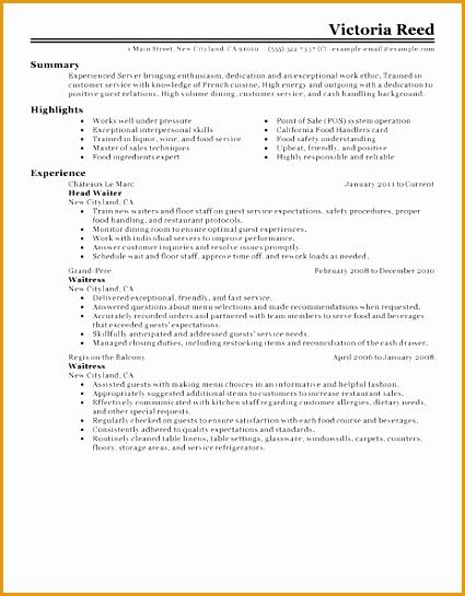 Server resume example545425