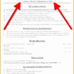 7 Resume Objective Statement Sample