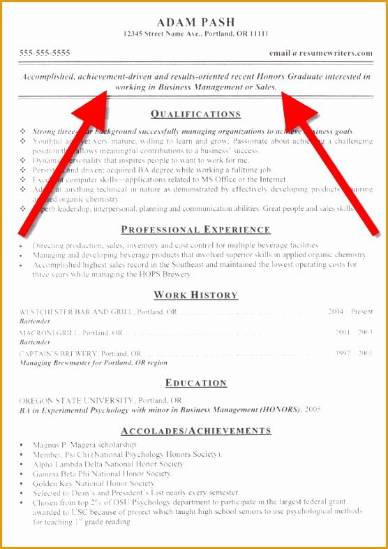 resume objective statement example