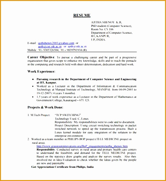 Software Engineer Resume Template for Fresher min