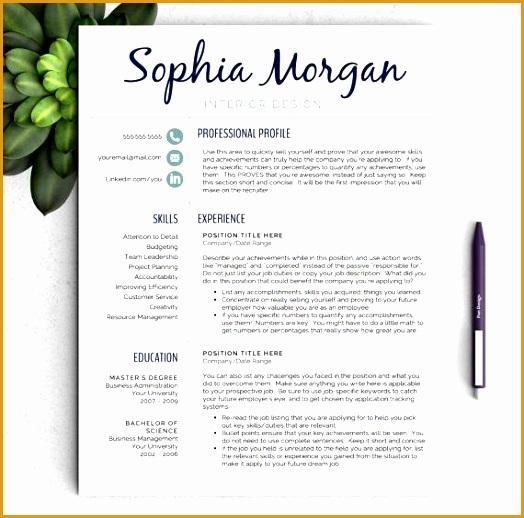 7 resume templates free free samples examples format. Black Bedroom Furniture Sets. Home Design Ideas