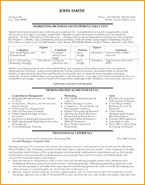 Here to Download this Business Development Executive Resume Template Sales ResumeMarketing617483