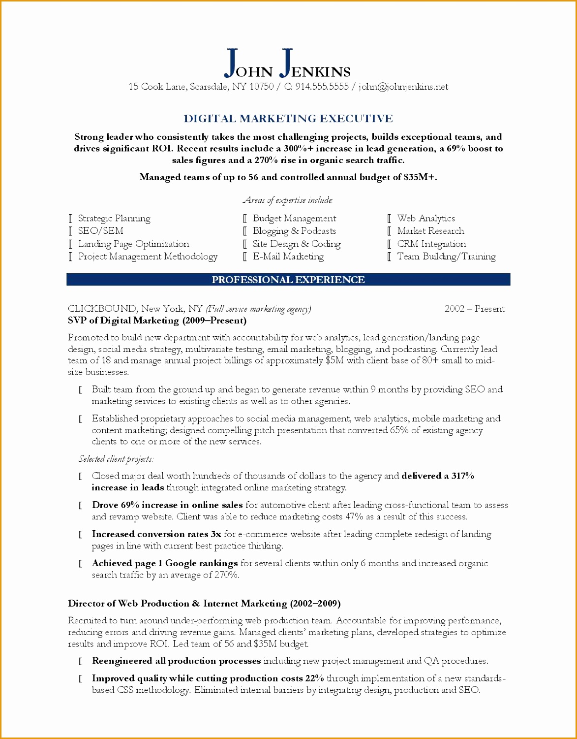 Digital Marketing Executive resume example15011173