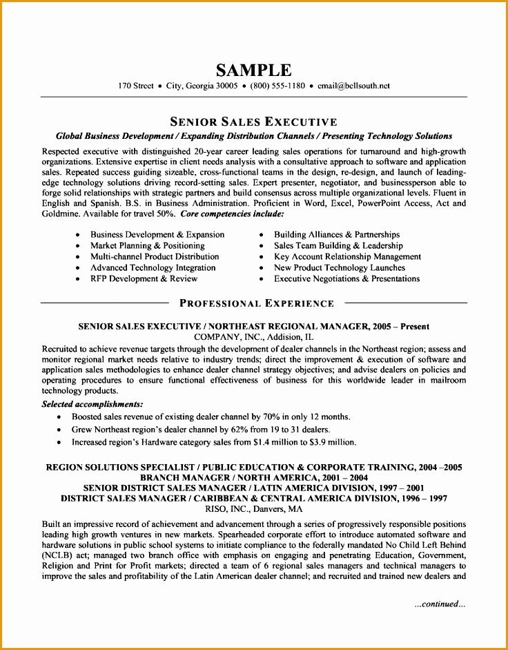 Senior Sales Executive Resume941736
