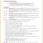 6 Self Employed Resume Templates