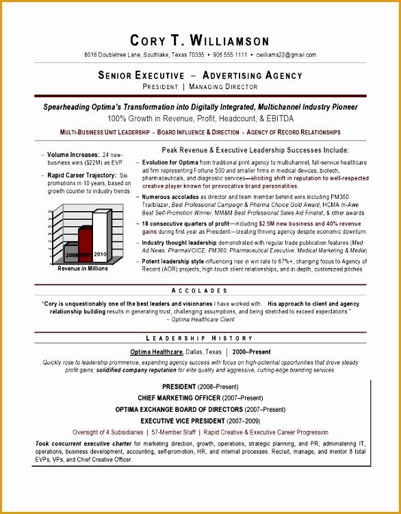 Senior Sales Marketing Executive Resume Example EssayMafia750586