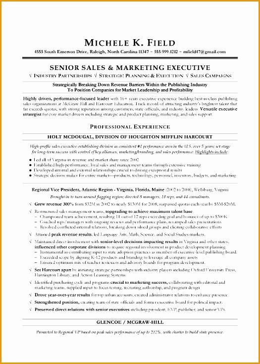 Regional VP Sales Sample Resume Executive resume writing Sales resume writer734525