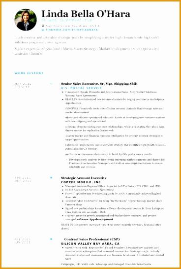 Senior Sales Executive Sr Mgr Shipping Sme Resume samples546368