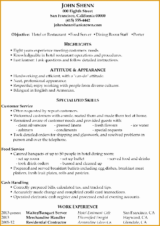 Functional Resume Sample Food Server Porter