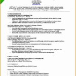 4 social Worker Resume Examples