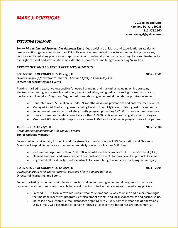 chic design example of resume summary 12 professional summary examples for resume resumes Resume Curriculum15011173