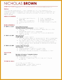 Awesome Design Ideas Web Developer Resume Template 16 Web Developer CV Example For It282220