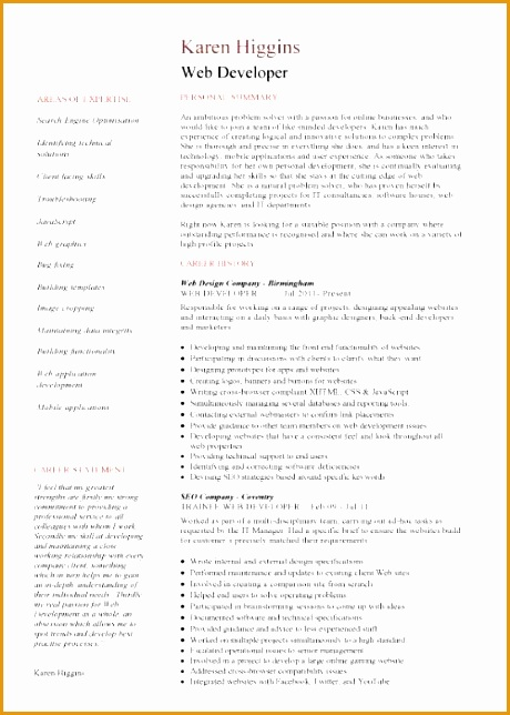 Web Developer resume 1 2 page version644460