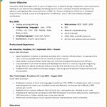 7 Web Developer Resume Template