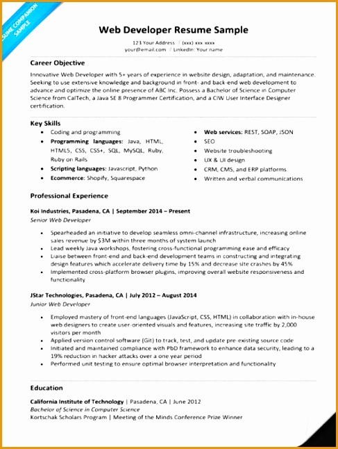 Web Developer Resume Sample Build My Resume Now Customize This Resume Now Download Free Resume646487