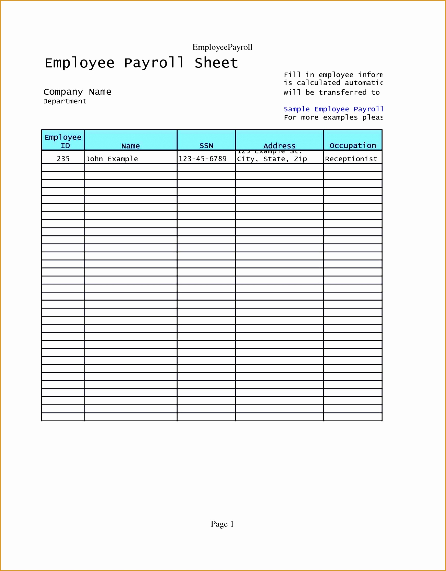 6 accounts payable resume sample