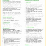 8 An Effective Chronological Resume Sample