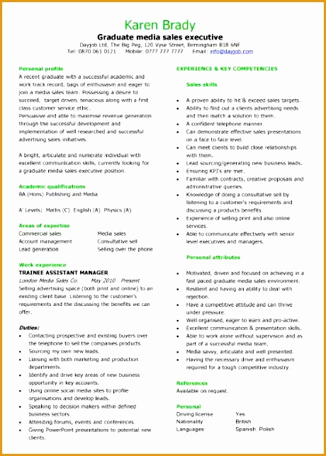 8 An Effective Chronological Resume Sample Free Samples