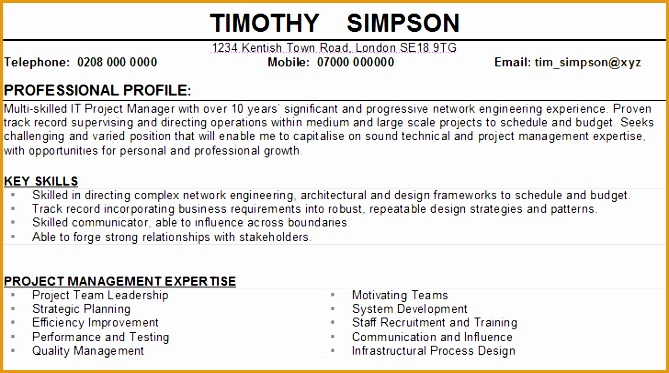 network engineer cv sample373669