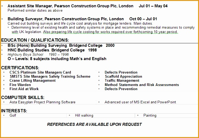 construction cv example464669