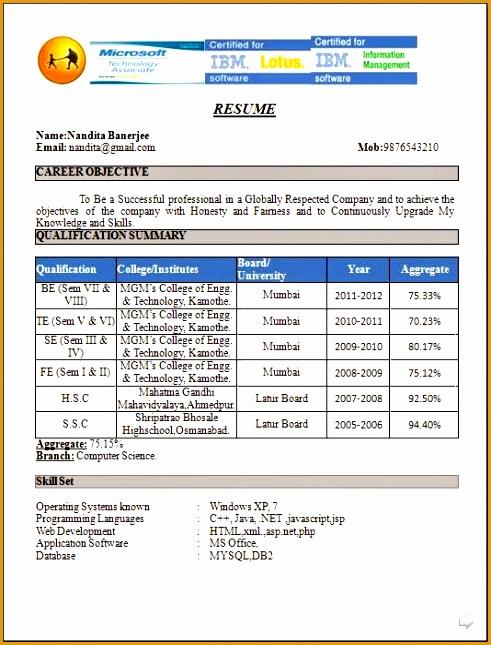 fresher resume format645491