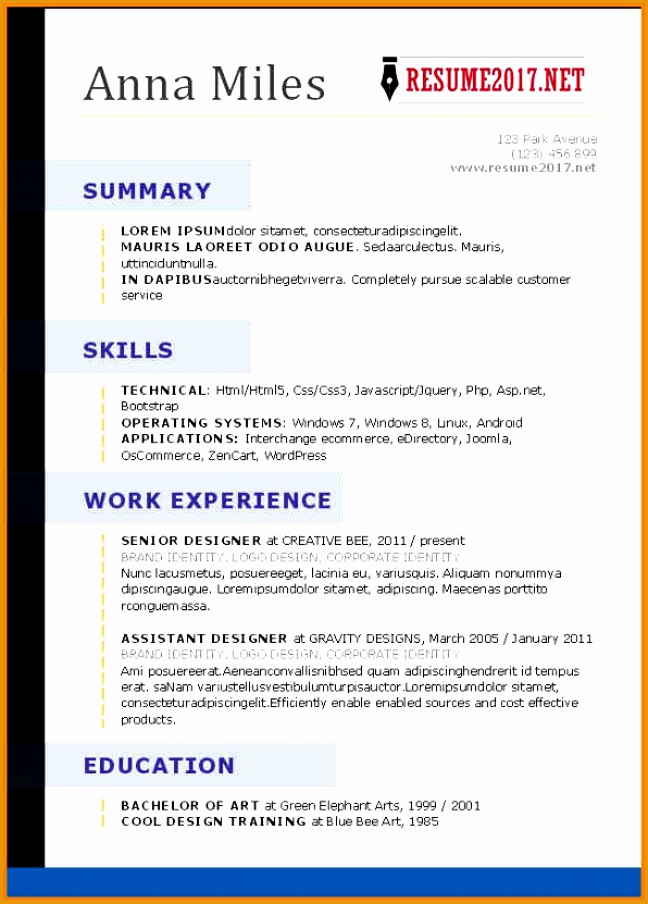 2017 resume template word831596