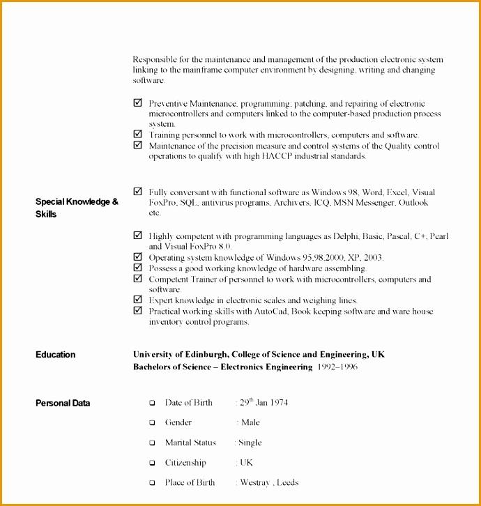 curriculum vitae example726690