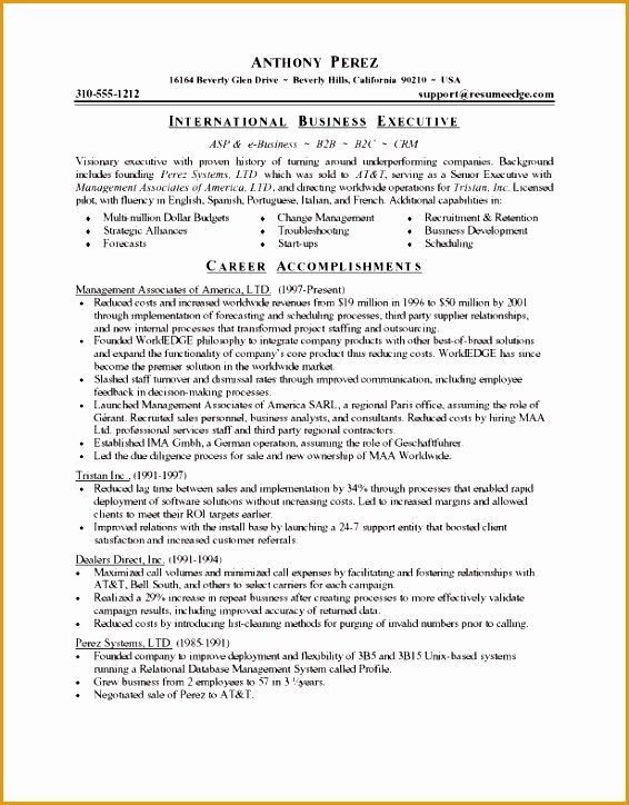 executive resume sample724566