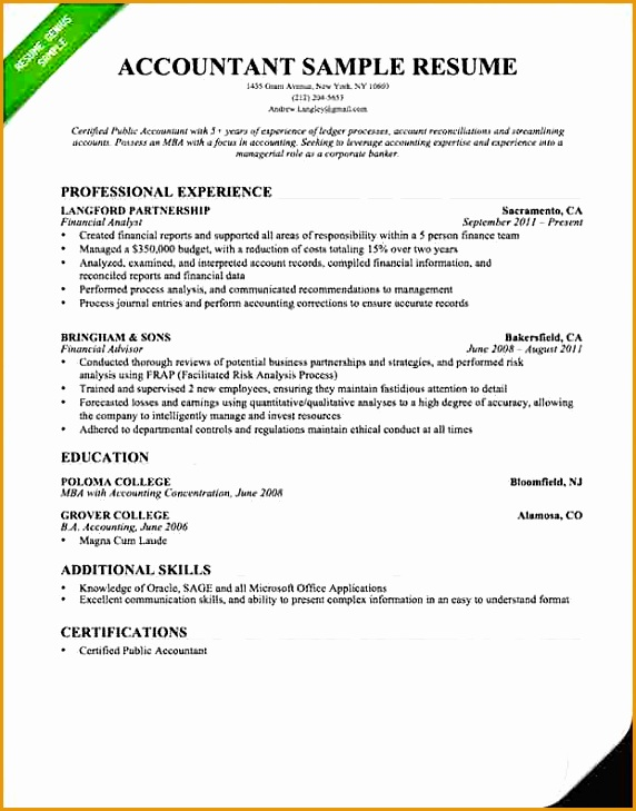 accountant resume word format729572