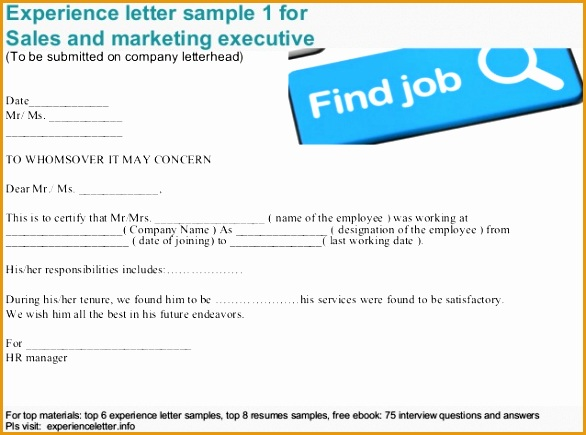 sales and marketing executive experience letter435586