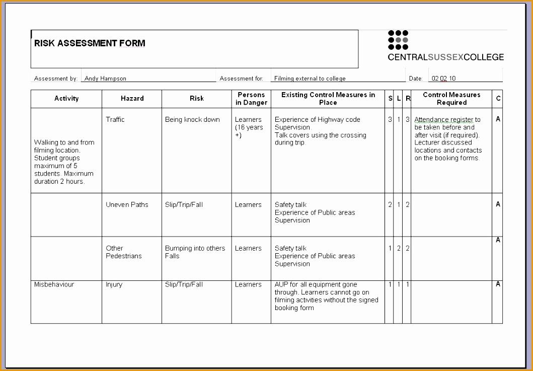 free printable risk assessment template7371059