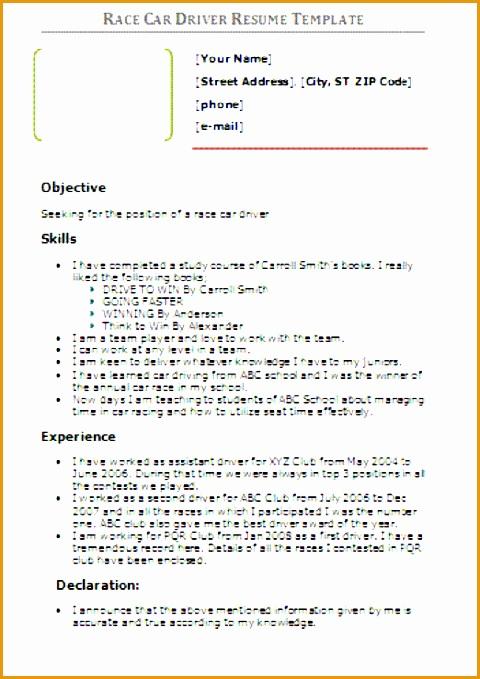 race car driver resume sample679480