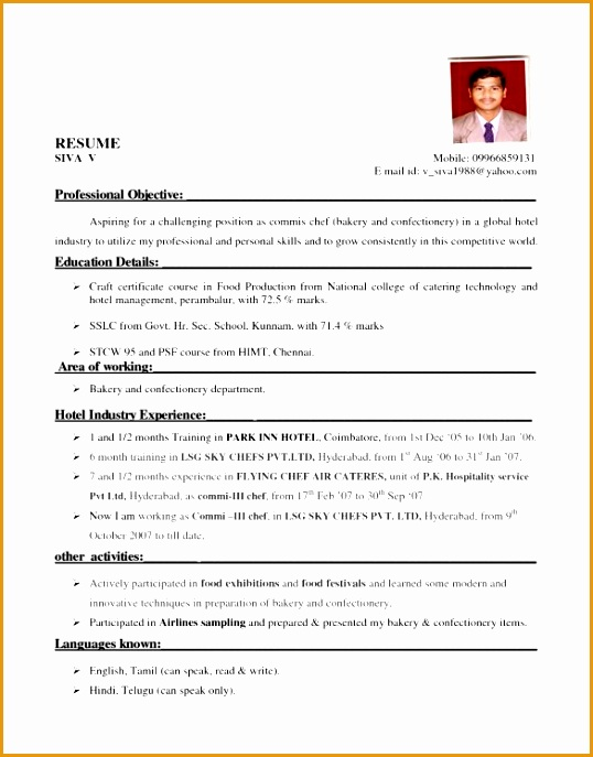 12 resume for hotel industry687538