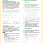 7 Insurance Broker Resume Template Sample