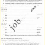 8 Job Police Captain Resume