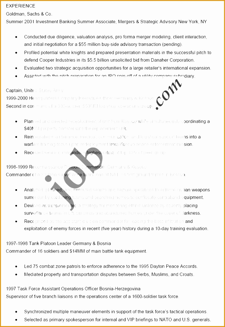Basic Resume Template1077740