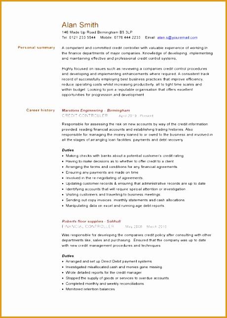 financial cv template 269644460