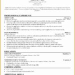 5 Professional Architect Resume Sample