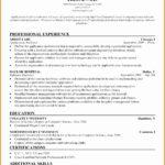 5 Professional Architect Resume Sample