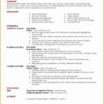 6 Professional Hair Stylist Resume