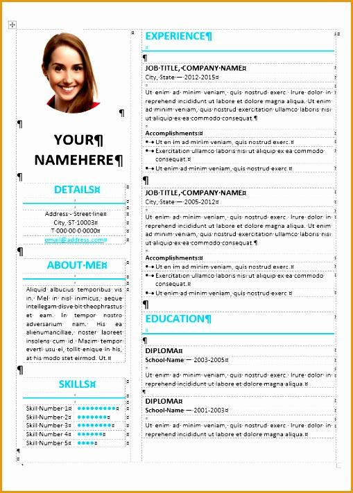 ikebukuro elegant resume template712509