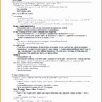 7 Resume Template for Work Experience