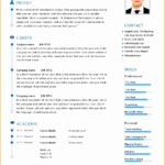 9 Sample Nursing Curriculum Vitae Templates