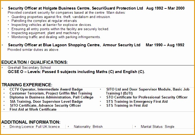security cv example464669
